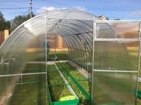 Оцинкованная теплица «VIP» арочного типа с дугами-фермами, с поликарбонатом 4 мм Sellex